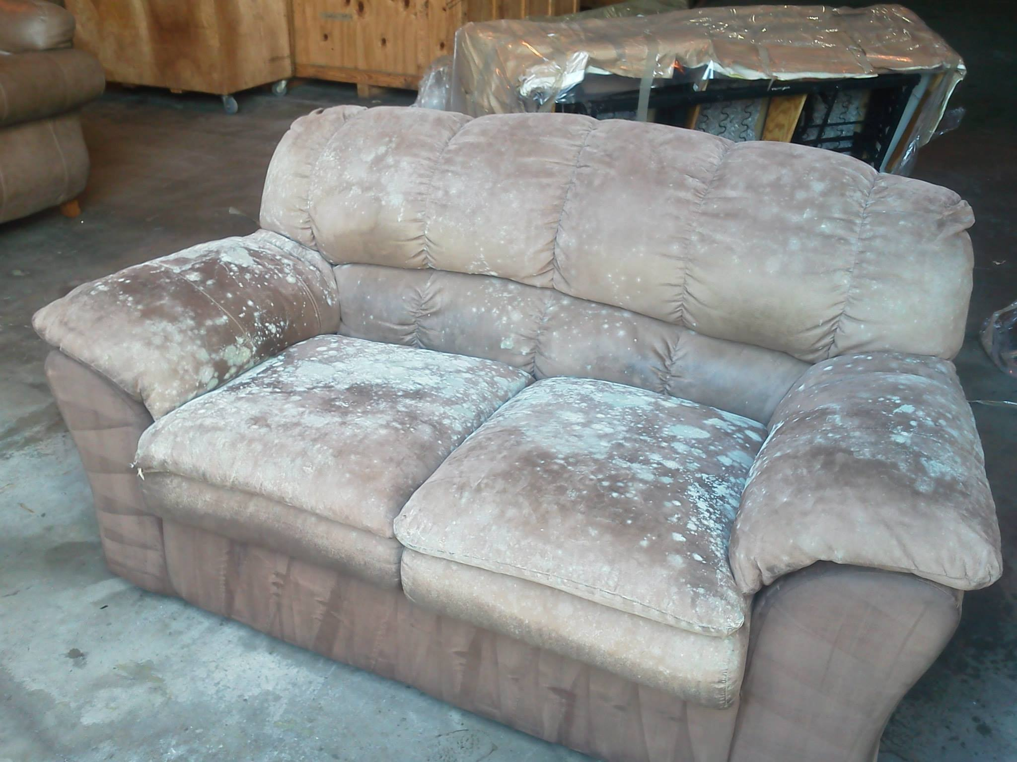 loveseat1a